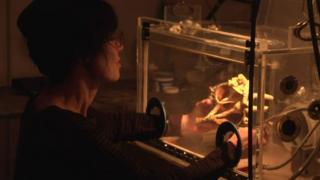 Gillian Genser com as mãos dentro de um invólucro transparente, manipulando uma concha