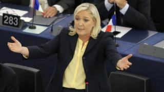 Marine Le Pen, Front National party leader