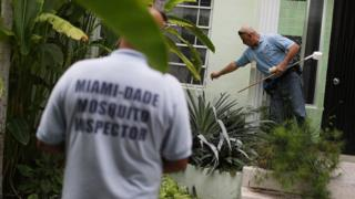 Mosquito control workers check for standing water