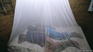 Bed nets can help prevent malaria (picture taken in Kenya)