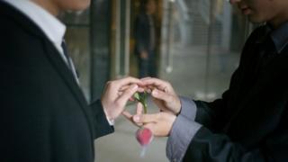 同性婚姻示意圖