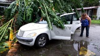 Una mujer observa los daños a su vehículo, sobre el que cayó un árbol.