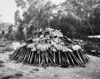 """""""Lashing"""" shovels retrieved from underground. Every grain of sand in the yellow tailings dumps that made the Witwatersrand landscape and every grain of gold that made its wealth, came from a rock off a black man's shovel underground. Central Salvage Yard, Randfontein Estates, Randfontein, 1966 ."""