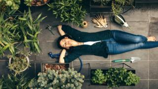 Связь с растениями