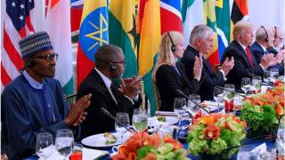 African leaders at lunch with President Trump