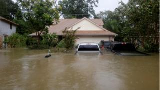 Houston'da Harvey Fırtınası