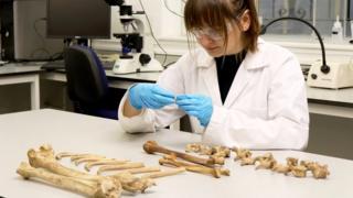 Bone sampling