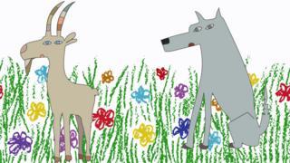 Cabra y lobo