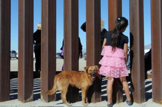 A young girl looks through a fence with her dog.