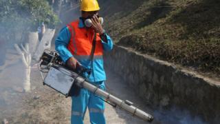 Fumigator in El Salvador