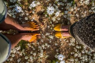 Two pairs of feet surrounded by flowers