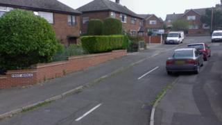 Frost Avenue, Langley Mill