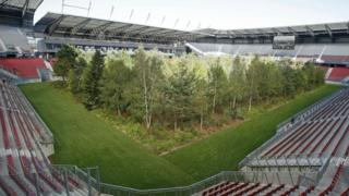 forest-in-football-stadium