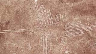 Dibujo de un ave gigante en Nasca