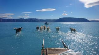 덴마크 기후 과학자 스테펜 올슨이 그린란드에서 포착한 사진
