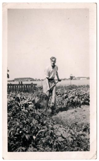Gerald Selby on his allotment