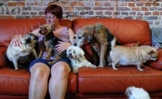 "Valerie Luycx, a founder of the association ""Les Petits Vieux"" acting as home for elderly animals, sits among some of the hundreds of pets"