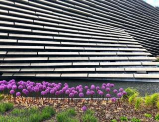 Morven Sutherland took this photo of alliums at the V&A in Dundee