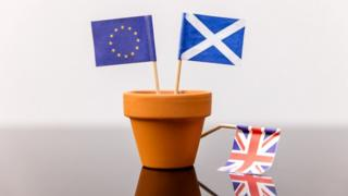 Plant pot with EU, Scotland and GB flags