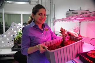 جویا ماسا، یکی از مدیران پروژه آزمایشگاه گیاهان ناسا در مرکز فضایی کندی است