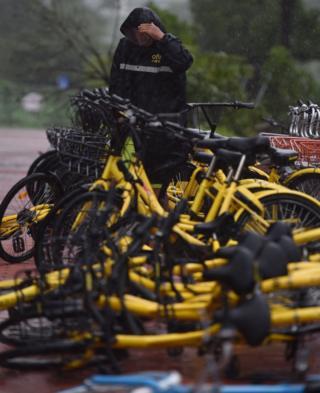 深圳街頭一名共享單車運維人員冒著颱風整理自行車(新華社圖片27/8/2017)