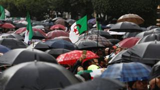 in_pictures Umbrellas seen during an anti-government protest in Algiers, Algeria - Friday 15 November 2019