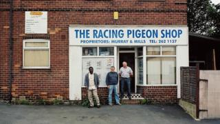 A racing pigeon shop