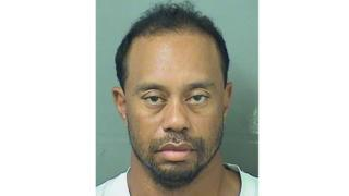 フロリダ州パームビーチ郡警察が公表したタイガー・ウッズ選手の逮捕写真