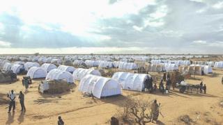 Buufata baqattootaa Dadaab Keeniyaa argamu