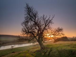 River Tweed near St. Boswells