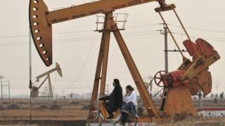 PetroChina'nın piyasa değeri hükümetin ekonomik politikalarından etkilendi.