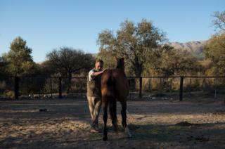 Oscar in the farmyard with a wild horse