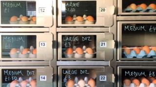 Egg vending machine.
