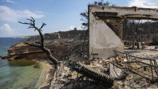 A photo shows the burned and blackened husks of buildings and twisted blackened trees sitting by the coastline in Greece
