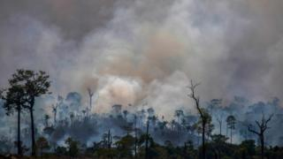 Smokes rises from forest fires in Altamira, Para state, Brazil, in the Amazon basin, 27 August