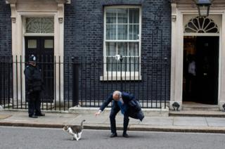 Kazuo Okamoto, chief executive of Mitsubishi Heavy Industries Europe attempts to stroke Larry the Downing Street cat