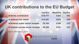 Datapic showing UK contributions to the EU Budget