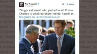 """The Telegraph tweets: """"Ginger extremist who plotted to kill Prince Charles is detained under mental health act"""" with a picture of Prince Charles and his red headed son Prince Harry"""