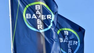 Banderas de Bayer.