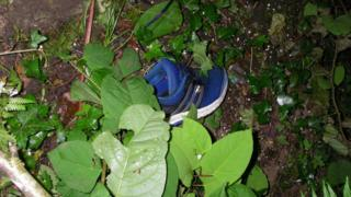Blue trainer in hedge