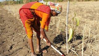 ખેડૂત મહિલા