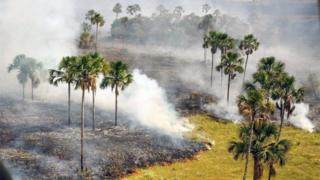 This handout picture released by Chico Mendes Institute for Biodiversity Conservation shows an aerial view of an area affected by fire at Chapada dos Veadeiros National Park in the state of Goias, Midwest of Brazil on October 23, 2017.