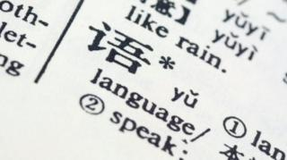 """Chinese character """"yu"""" - meaning language - in a dictionary"""
