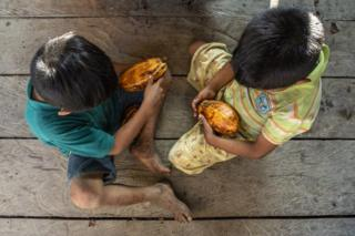 Children in the Waikas community play with cocoa pods