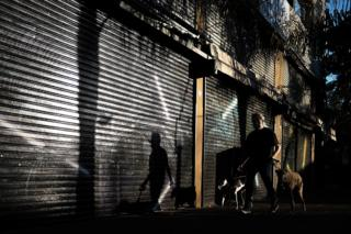 A man walks his dogs in Buenos Aires, Argentina