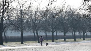 Dog walker in Windsor, January 23 2019