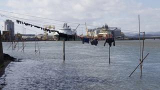 Washing line at harbour