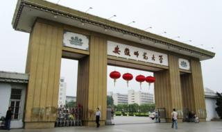 A view of the main entrance gate at Anhui Normal University