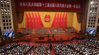Congreso Nacional Popular