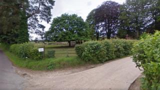Allenford Farms - Google